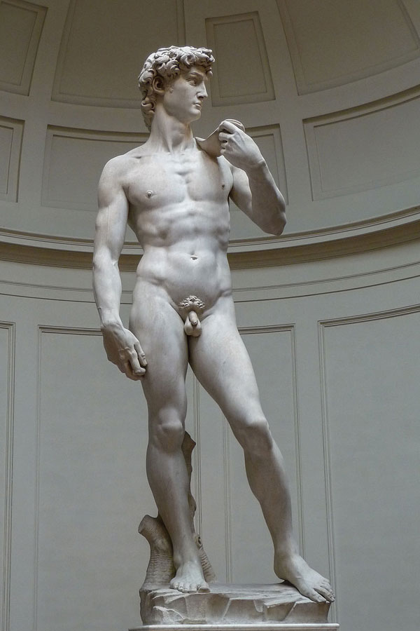 The Statue of David by Michelangelo