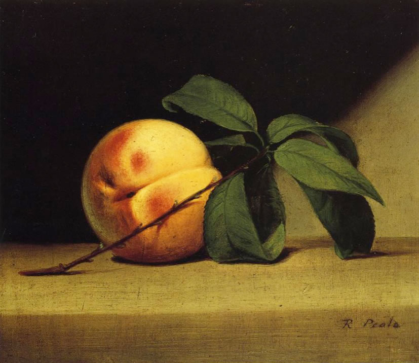 Raphaelle Peale1774-1825Still Life with Peach1816Oil on canvas7.36 x 8.42 in.