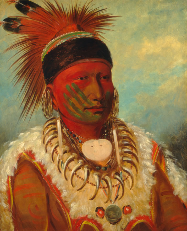 The White Cloud Head Chief of the Iowas
