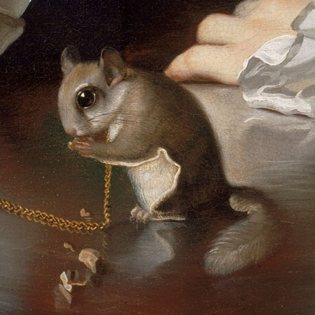 Boy with a flying Squirrel by John Singleton Copley (Detail)