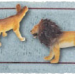 Ticket with a Male and Female Lion on it