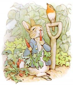 Peter Rabbit eating a carrot and looking at a bird